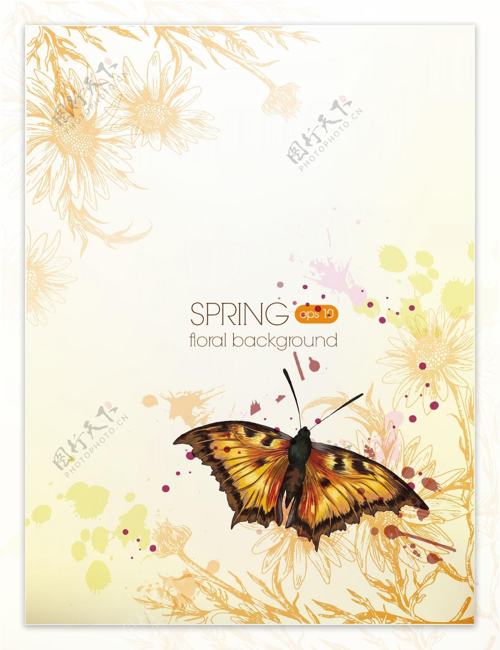 梦幻花纹花朵蝴蝶图片
